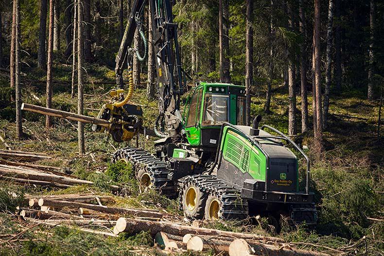 Hyvin hoidettu metsä takaa parhaan mahdollisen metsästä saatavan tulon.